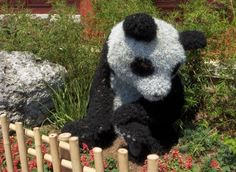 A panda topiary adorns the gardens outside the China pavilion during the 2006 Flower & Garden Festival. Photo by Cathy Sowa.