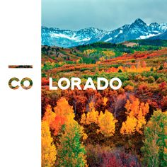 Creative Branding, Photo, Credit, Peter, and Kunasz image ideas & inspiration on Designspiration Living In Colorado, Colorado Homes, Aspen Colorado, Acadia National Park, National Parks, The Places Youll Go, Places To See, Critter Sitters, Colorado Mountains