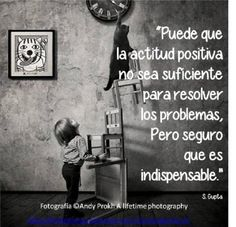 It may be that the positive attitude is not sufficient to solve the problems , but it sure is indispensable.