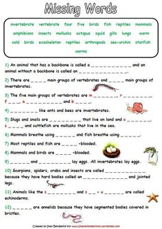 Worksheets Classification Of Organisms Worksheet english activities and worksheets on pinterest animal classification activity worksheets