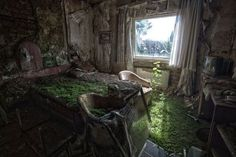 Reclamation - A hotel ruined by a fire three years ago is among a number of once glamorous buildings being slowly reclaimed by nature in Germany.Photographer Michael Mehrhoff    wow    this is beautiful