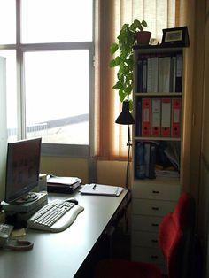 ordinato e innevato....Hellio's workplace!
