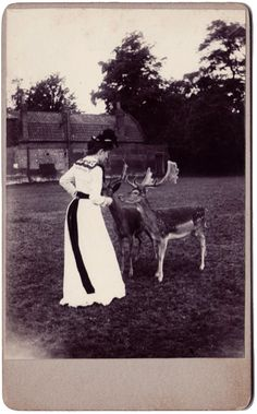 thehystericalsociety:  Backyard fauna - c. 1890s - (Via)