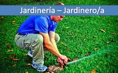 Diseño web sector servicios, jardineria, jardineros y similares