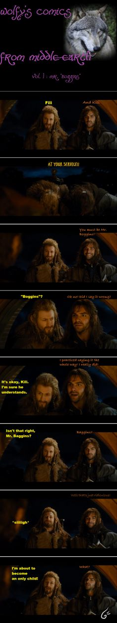 "Mr. Boggins...Fili's face in the last panel, he's all ""just so you know..."" and Kili's all ""eh?"""