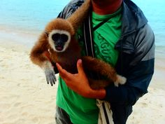 try not to promote this type of tourist entertainment, rabies, animal cruelty as its a scam