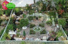 OMG fairy gardens