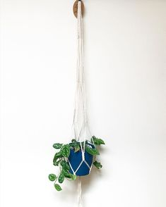 """hangs. on Instagram: """"R a m s a y [this was customed to fit a 6' tall pot, we gave it lots of secure knots] - 🌱: Silver Pothos . . . . . . . . . . . #macrame…"""" Plant Hanger, Macrame, Knots, Body Art, Fit, Plants, Silver, Instagram, Decor"""
