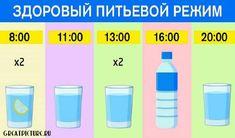 График для худеющих: ешь что хочешь и пей воду по часам. Результат — минус 15 % жира! Health Diet, Health Fitness, Healthy Drinks, Healthy Recipes, Lose Weight, Weight Loss, Food Tasting, Perfect Body, Health And Beauty