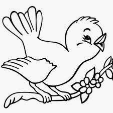 Image Result For Desenhos De Repteis E Aves Para Colorir Flores