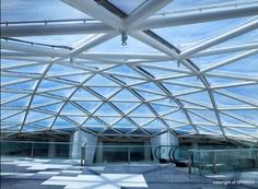 ETFE Grid Shell Roof system