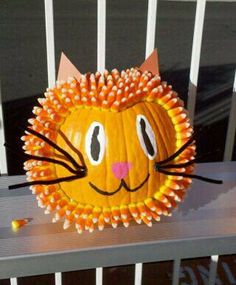 Candy Corn Cat Pumpkin from the Van Avery Prep pumpkin decorating contest in Temecula, California. Fall 2010