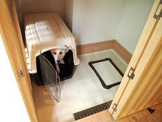 Web内覧会 - 犬部屋。|わんこのいる家。 Pet Cage, Bath Caddy, Interior Design Living Room, Cabinet, Storage, House, Furniture, Home Decor, Spaces