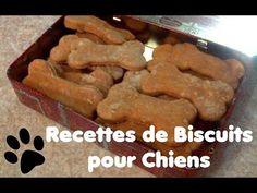 Recette de biscuits pour chien au Pâté de Foie - YouTube