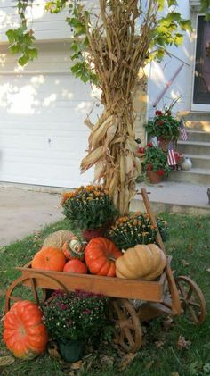 See how to create fabulous fall porch displays using pumpkins, mums, gourds, and fall farmhouse style accessories. Find unique ideas for fall porch decor. Porche Halloween, Fall Halloween, Outdoor Halloween, Halloween Pumpkins, Halloween Ideas, Thanksgiving Signs, Thanksgiving Decorations, Fall Decorations, Outdoor Decorations