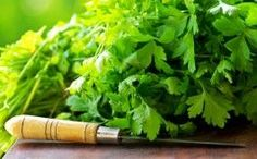 Parsley Health Benefits: Growing Your Own Medicine