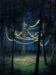 jeremy mangan lights in the woods