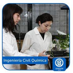 Ingeniería Civil Química