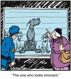 Marmaduke Comic Strip, April 12, 2016 on GoComics.com