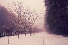 Winter is not forever #bereavementcounseling