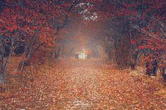 *Moody Season* by Kicka Terho