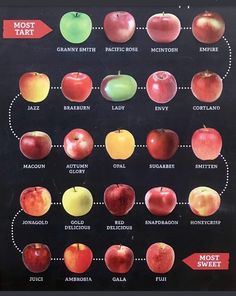 """""""This apple chart, courtesy of Bev Christianson, arranges apple varieties in order from tart to sweet. Apple Chart, Best Apple Pie, Crudite, Apple Varieties, Apple Pie Recipes, Apple Desserts, Fruit Recipes, Dessert Recipes, Granny Smith"""