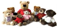 Send a bear to show you care, Personalise it at say it with bears Personalised Teddy Bears, Toys, Animals, Personalized Teddy Bears, Activity Toys, Animales, Animaux, Clearance Toys, Animal
