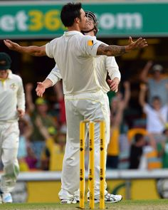 Mitchell Johnson and George Bailey celebrate winning the first Test. Ashes Cricket, Mitchell Johnson, Sports Stars, Sport Man, Urn, Victorious, Australia, Wallpapers, Celebrities