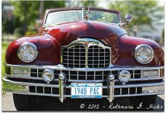 Vintage Packard - So elegant that I just had to stop and take photos.