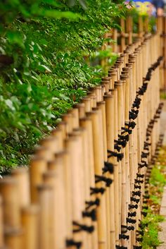Bamboo Garden Fences, Bamboo Fencing, Wood Fences, Garden Gates, Japanese  Fence, Japanese Bamboo, Japanese Garden Design, Fence Art, Bamboo Crafts