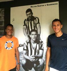 BotafogoDePrimeira: Com gramado revitalizado, atletas da base exaltam ...