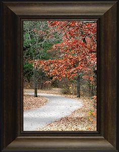 Red Leaf Pass By Todd Thunstedt 26x20 Tree Landscape Winding Road Woods Framed Art Print Wall Décor Picture ThunderMark Art and Graphics http://www.amazon.com/dp/B014GQK6BG/ref=cm_sw_r_pi_dp_NW34vb04S6SG2