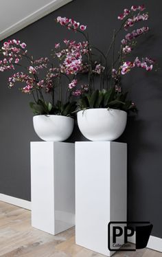 I loved this decoration with silk orchid flowers, and white pottery & pilars.Set in wit met zijde orchideeën Deco Floral, Arte Floral, Pottery Pots, Garden Design, House Design, Orchid Arrangements, Interior Plants, Plant Decor, Indoor Plants