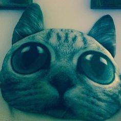 Egyptian Mau Cat Pillow / www.meowingtons / meowingtons / cat decor / @erica_airwrecka_