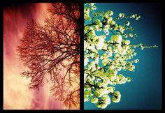 Olyan volt, mint az áprilisi ég: Szemében csillogott a reggeli azúrkék. Tűz égett szívében, S lelkében csalfa, vak remény... Olvadó hó, mi áttör a fagyon, S virágok szirmait bontja a tavon. Olyan volt, mint az októberi éj: Alkonyat gyúlt szemében, S jégeső hullt szívében. Lelkében sötét üresség... Legmélyebb...