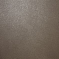 Metallic Paint Ralph Lauren Ambassador Sterling The