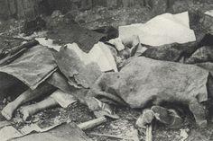 Come dieci suore polacche diedero la vita  durante la II Guerra Mondiale  Nell'esercizio di una carità eroica,  si immolarono per aiutare centinaia di feriti   http://www.aleteia.org/it/politica/articolo/come-dieci-suore-polacche-diedero-la-vita-durante-la-ii-guerra-mondiale-5863984909516800