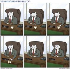 What the office would be like if your boss was a cat.   The Adventures Of Business Cat
