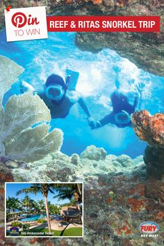 Repin this image and include the tag #FuryFreebie to win a Key West Vacation for 2! Your trip will include this Reef and Ritas Snorkel trip plus 5 days/4 nights at the Key West Best Western Key Ambassador Resort. Make sure to repin by 09/30/2015 to be entered!