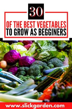 30 of the best vegetables to grow as beginners. You don't need a huge backyard to grow food for your family. In fact, you don't even need a backyard at all. More and more people are container planting vegetables and getting plenty of food. In addition to saving space, using buckets for gardens also helps with a lot of other common gardening problems like young plants getting trampled, rabbits eating plants, poor soil, hard rains, weeds, and ease of care. Planting Vegetables, Planting Seeds, Growing Vegetables, Growing Onions, Growing Ginger, Bucket Gardening, Kitchen Gardening, Organic Compost, Organic Gardening