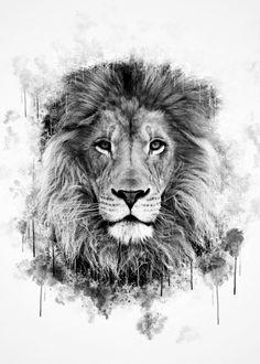 Lion Head Black and White Acuarela de Lion Head en blanco y negro Black And White Lion, Black And White Posters, Black And White Drawing, Lion Sleeve, Lion Tattoo Sleeves, Family Tattoos, Small Tattoos, Mini Tattoos, Couple Tattoos