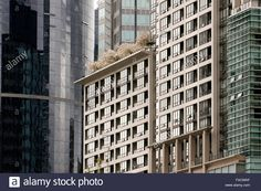 Image result for downtown vancouver buildings