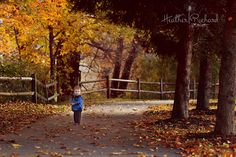 fall photography inspiration | photography forum member share