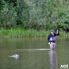 Hello Monday!   How was your fly fishing weekend?   #aosfishing #flyfishingmakesyouhappy #flyfishing #fliegenfischen #pescamosca #fluefiske #graz #styria #steiermark #austria #onlineshop #picoftheday #photooftheday #lovefishing #catchoftheday #catchandrelease #onthefly #saltwaterfishing #rainbowtrout #trout #looparmy #finatical #river #onthefly #monday Hatch Outdoors, Inc. @aosflyfishing Simms Fishing Products Loon Outdoors @fullingmill