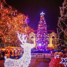 #christmasmood #christmasmarket #christmasdecorations #christmastree #citylights #oldtownsquare #reindeer #baiamare #maramures #romania #visitromania by antonmihis