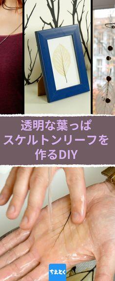 3つの材料で葉っぱをほとんど透明にしてしまう– それを使った工作が素敵!◇透明な葉っぱ、スケルトンリーフを自分で作る #スケルトンリーフ #DIY #手作り #アクセサリー #簡単 #作り方 #落ち葉#オシャレ Japan Design, Diy And Crafts, Frame, Flowers, Handmade, Home Decor, Garden, Japanese Design, Picture Frame