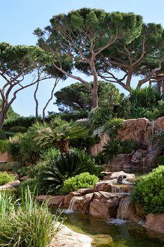 Garden Design -- Une villa a Saint-Tropez : RHLD, cascades, jardin en méditerranée. Garden Pool, Tropical Garden, Water Garden, Garden Landscaping, Landscaping Tips, Saint Tropez, Beautiful Landscapes, Beautiful Gardens, Landscape Architecture
