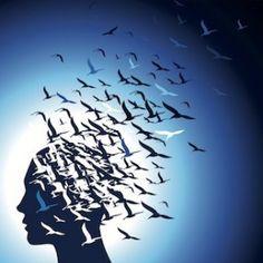 Neuropsicología dela emoción
