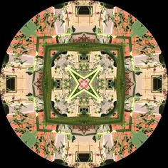 Mandalas from around my gardens. I created this mandala with a smart phone app, Kaleidagram, from Blink Tap, LLC. It creates mandalas from anything that the smart phone or tablet takes photos of.  It works with both Android and Apple phones and tablets.