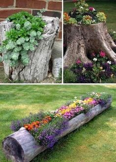 24 Creative Garden Container Ideas | Use tree stumps and logs as planters! This would be a great use for the old railroad tie in my yard!! by Maureen Daly CulSJ